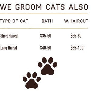 grooming-information-5