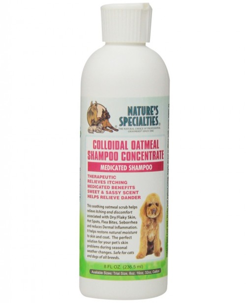 Nature S Specialties Colloidal Oatmeal Shampoo