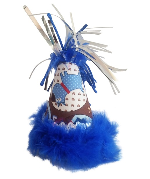 Party Hat, Blue & Brown